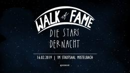 7. HLW FW-Ball: Walk of Fame - die Stars der Nacht